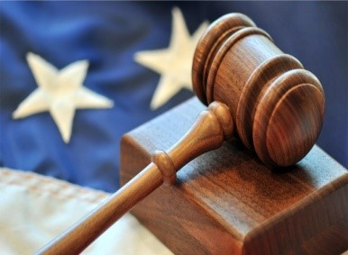 CONSTITUTIONAL PROVISIONS FOR JUDICIAL REVIEW